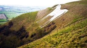 Kulle Westbury för vit häst i Wiltshire, sydliga England royaltyfria foton