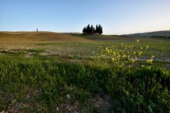 Kullen av Tuscany, paradis är därefter CXIII Royaltyfri Bild