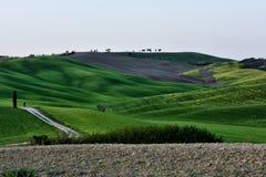 Kullen av Tuscany, paradis är därefter CXVIII Royaltyfria Bilder