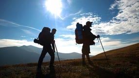 kullen bemannar Fotografering för Bildbyråer