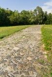 kullerstenväg Arkivfoto