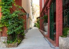 Kullerstenväg i den lilla gamla Europa staden Fotografering för Bildbyråer