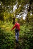 Kullu, Himachal Pradesh, Inde - 6 août 2018 : Un touriste dans la forêt avec une nature l'explorant de caméra en Himalaya images stock