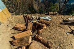 Kullu, Himachal Pradesh, India - December 03, 2018: bejaarde timmermansslaap op grond in Himalayagebergte stock foto