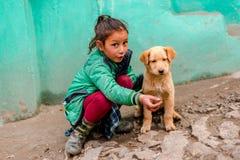 Kullu, Himachal Pradesh, Indien - 4. Februar 2019: Indischer Hund mit Kindern in Himalaja-Bergen, Himachal Pradesh stockbild