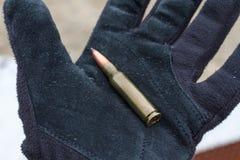 Kulor för gevär Kula i asken Royaltyfri Fotografi