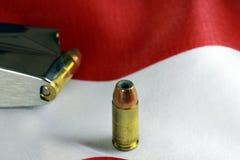 Kulor med vapengemet - vapenrättbegrepp Fotografering för Bildbyråer