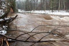 Kulör flod för scenisk vinter i land Royaltyfri Bild