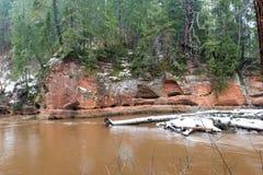 Kulör flod för scenisk vinter i land Arkivfoton