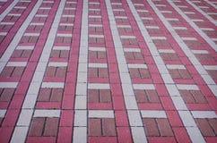 Kulör rutig tegelplatta på gatan Fotografering för Bildbyråer