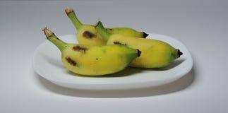 Kultiverad banan tre Royaltyfri Foto