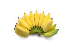 Kultiverade bananer Royaltyfri Foto