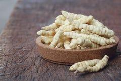 Kultiverade Cordyceps Royaltyfri Bild