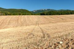 Kultiverade cornfields mot kullarna av bergen i Fran Royaltyfri Bild