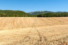 Kultiverade cornfields mot kullarna av bergen i Fran Fotografering för Bildbyråer