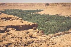 Kultiverade fält och gömma i handflatan i Errachidia Marocko Nordafrika A royaltyfri bild