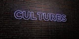 KULTURY - Realistyczny Neonowy znak na ściana z cegieł tle - 3D odpłacający się królewskość bezpłatny akcyjny wizerunek ilustracji