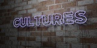 KULTURY - Rozjarzony Neonowy znak na kamieniarki ścianie - 3D odpłacająca się królewskości bezpłatna akcyjna ilustracja ilustracja wektor