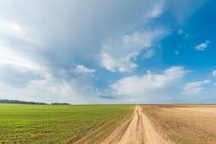 Kultywująca zielona łąka scena wiejskiej Fotografia Royalty Free