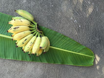 Kultywujący banan, Tajlandzki banan i zieleń banan, leaf Obraz Royalty Free