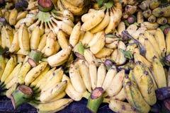 Kultywujący bananowy owocowy dojrzały tło zdjęcie royalty free