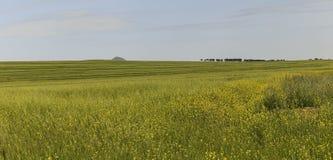 Kultywujący pola w górach Gobustan (Azerbejdżan) obraz stock