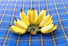Kultywujący banan Fotografia Royalty Free