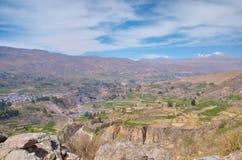 Kultywujący krajobraz, Colca jar Zdjęcia Royalty Free