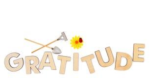 Kultywuje wdzięczności pojęcie Z Drewnianymi Kapitałowymi listami ilustracji