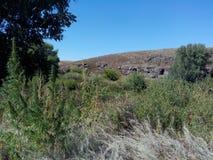 Kumachka flod nära shoreBeachen som är bevuxen med kullar royaltyfri bild