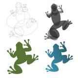 Kumak żaba, ilustracje, budowy ocena złoty współczynnika trendu logo Fotografia Royalty Free