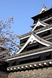 Kumamoto Castle and Cherry blossom Royalty Free Stock Image