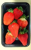 Kumamoto jordgubbe på den plast- plattan royaltyfria foton
