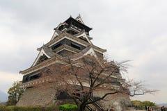 Kumamoto slott Arkivbild