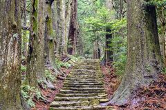 Kumano Kodo Stock Photography