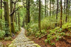 Kumano Kodo Sacred Japanese Trail Royalty Free Stock Images