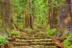Kumano Kodo Sacred Trail Stock Photo
