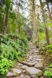 Kumano Kodo Sacred Trail. Matsumoto Pass on the Kumano Kodo, a sacred trail and World Heritage site  near Kumano City, Japan Stock Images