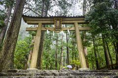 Kumano Sacred Trail Royalty Free Stock Photography