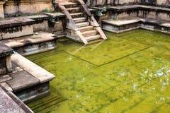 Ruins of Kumara Pokuna in Polonnaruwa Stock Images