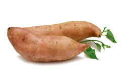 Kumara (süße Kartoffel) Stockfotografie