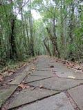 KumarakomVogelreservaat in Kerala, India royalty-vrije stock afbeelding