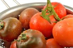 Kumato tomat och röd tomat Royaltyfria Bilder
