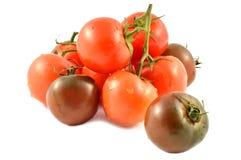 Kumato tomat och röd tomat Royaltyfri Foto