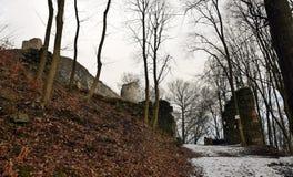 Kumburk - руины замка в зиме Стоковое Фото
