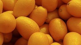 kumquat obraz stock