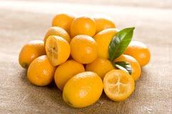 Kumquat. Small orange fruits on brown background Royalty Free Stock Image