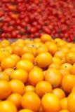 Kumquat Fotografia Stock