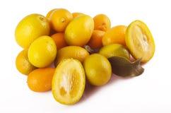 kumquat Obraz Royalty Free