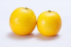 Kumquat. Fresh kumquat fruits on white background Royalty Free Stock Photography